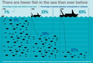 Rappresentazione grafica della progressiva diminuzione di specie marine